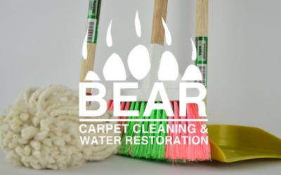 Bear's Carpet Cleaning Home Tips: Part 2