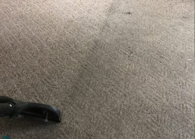 carpet-cleaning-process-gallery-image