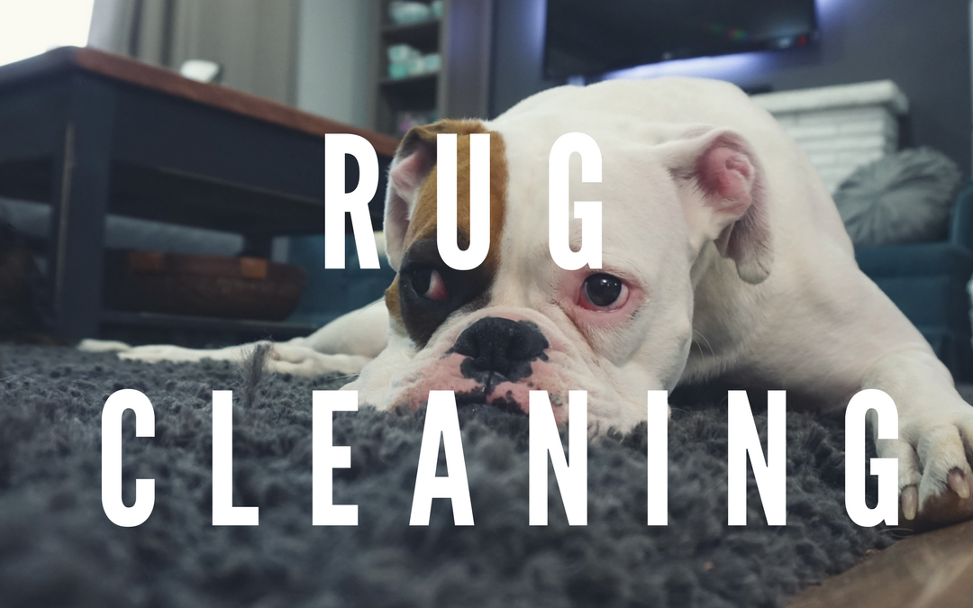 How Does Bear Clean Your Rugs?