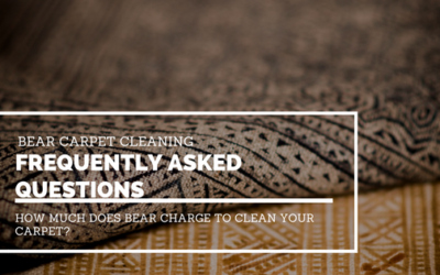 Frequently Asked Questions: How Much Does Bear Charge To Clean Your Carpet?