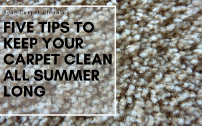 Five Tips To Keep Your Carpet Clean All Summer Long