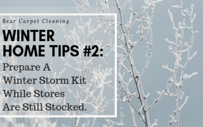 Winter Home Tips #2: Prepare A Winter Storm Kit While Stores Are Still Stocked