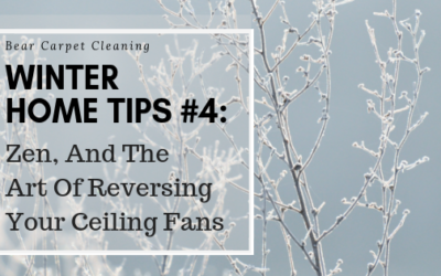 Zen And The Art Of Reversing Your Ceiling Fans